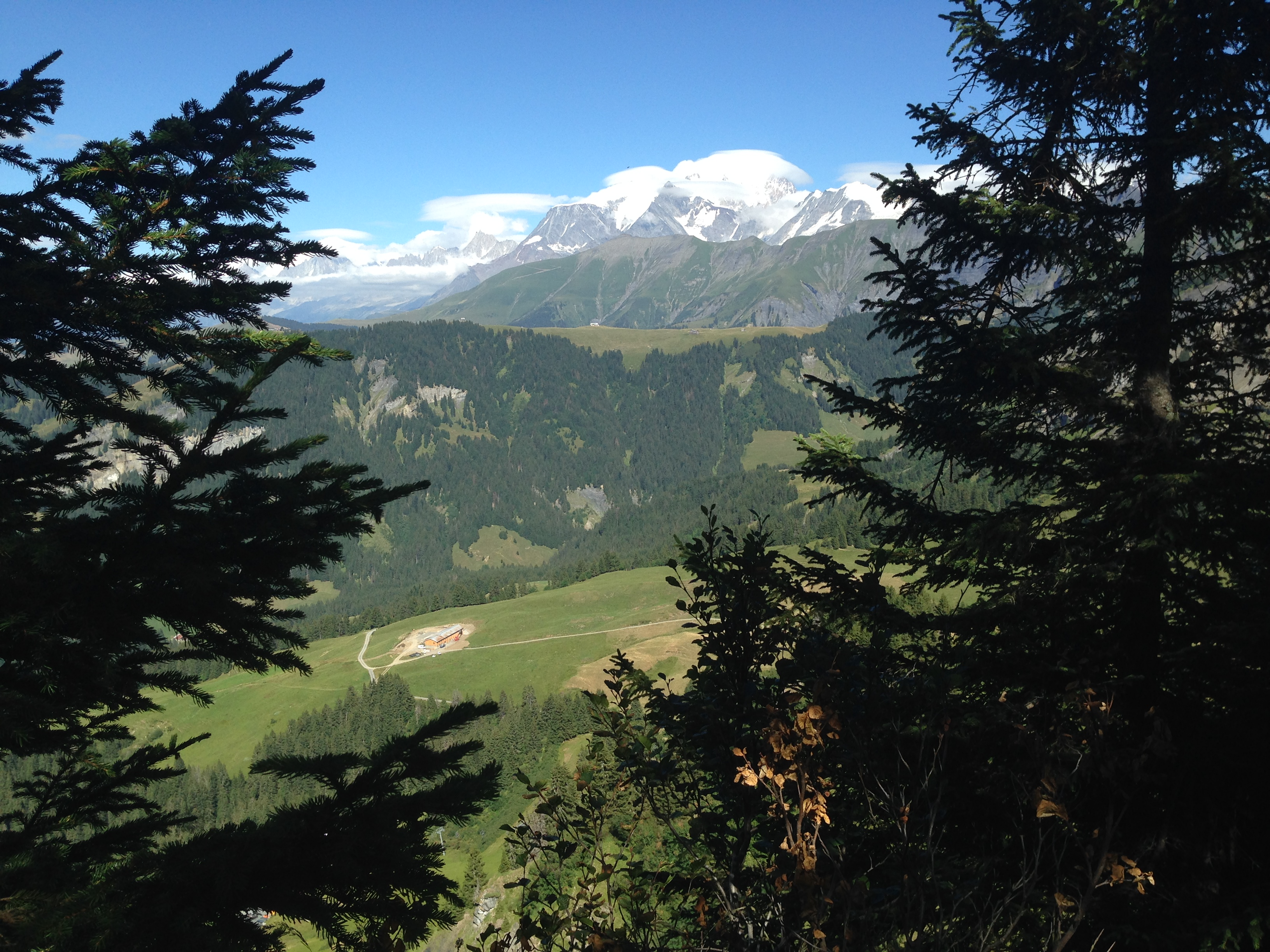 View of Mont Blanc from hills above the Chalet